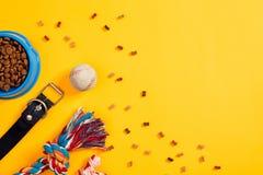 Juguetes - cuerda coloreada multi, bola y comida seca Accesorios para el juego en la opinión superior del fondo amarillo Fotografía de archivo libre de regalías