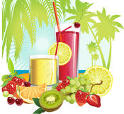 Juice And Fruits. Stock Image