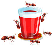 Juice and ants. Illustration of a glass of drink and many ants Royalty Free Stock Images