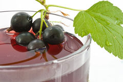 Juice from a black currant Stock Photography