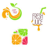 Juice concept icons Stock Images