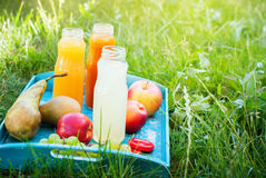 Juice Different Colors Bottles Fruits on Blue Tray Royalty Free Stock Image