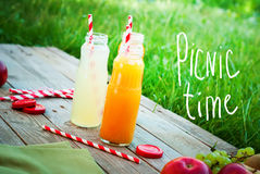 Juice Different Colors Bottles Fruits Wooden Picnic Royalty Free Stock Photo