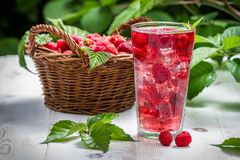 Juice from freshly harvested raspberries Stock Photography