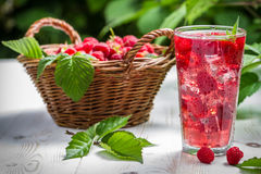 Juice from freshly harvested raspberries served with ice Stock Images