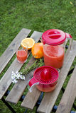Juice. Freshly squeezed orange juice in glass and carafe with juicer Royalty Free Stock Photos