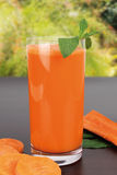 Juice Royalty Free Stock Photography