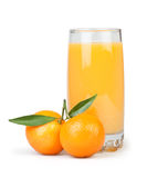 Juice glass tangerine Royalty Free Stock Image