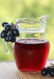Juice and grapes Stock Image
