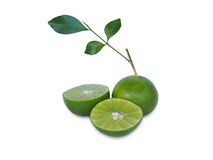 Juice lime on white Stock Image
