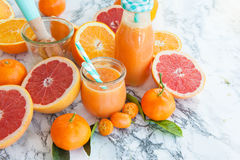 Juice made from fresh citrus fruits Stock Image