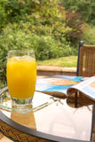 Juice and magazine. Fruit drink and magazine with garden backdrop royalty free stock photo