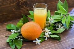 juice orange squeezed Στοκ εικόνες με δικαίωμα ελεύθερης χρήσης