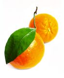 Juice oranges. Oranges isolated on a white background prepared Stock Photo