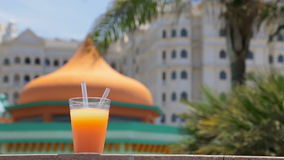 Juice, palm tree and hotel stock video footage