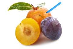juice of plum Stock Photography