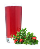 Juice and red cowberry royalty free stock photos