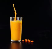 Juice from sea buckthorn in a glass with berries with drops,splashes Stock Image