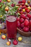 Juice from sloes and plums Royalty Free Stock Photo