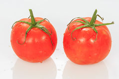 Juice Tomato Fotografía de archivo libre de regalías