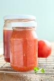juice tomato Стоковые Фотографии RF