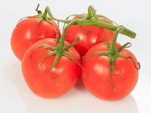 Juice Tomato Royalty Free Stock Photography