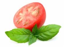 Juice tomatoes and basil Stock Photos