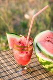 Juice of water-melon Royalty Free Stock Image
