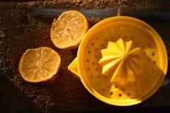 Juicer amarillo brillante de la fruta cítrica del limón todavía de la fruta a la vida Imágenes de archivo libres de regalías