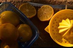 Juicer amarillo brillante de la fruta cítrica del limón todavía de la fruta a la vida Imagen de archivo