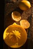 Juicer amarillo brillante de la fruta cítrica del limón todavía de la fruta a la vida Imagenes de archivo