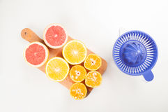 Juicer for citrus with grapefruit fruits. Plastic juicer for citrus with grapefruit fruits on white background Stock Image