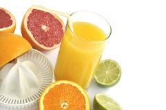 Juicer con las rebanadas de frutas cítricas y de jugo fresco. Foto de archivo