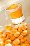Juicer with mandarines Stock Photo