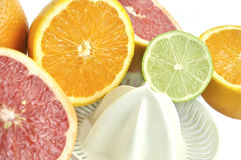 Juicer with slices of grapefruit, orange and lime. Stock Photos