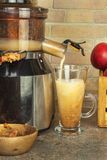 Juicer und Apfelsaft Zubereitung von gesunden frischen Säften Juicing Hauptäpfel in der Küche Verarbeitung der herbstlichen Fruch lizenzfreies stockfoto