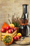 Juicer y zumo de manzana Preparación de los jugos frescos sanos Manzanas juicing caseras en la cocina Proceso de la fruta otoñal fotografía de archivo libre de regalías