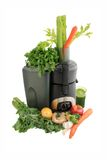 Juicing fresh vegetables and fruit Royalty Free Stock Images
