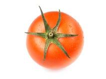 Juicy απομονωμένη ντομάτα στο άσπρο υπόβαθρο Στοκ Εικόνα
