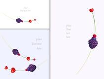 Juicy δασική μούρων ρομαντική κάρτα καρδιών βαλεντίνων σειράς γλυκιά με το κενό διάστημα για το κείμενο Διανυσματικό στρέθιμο της Στοκ φωτογραφία με δικαίωμα ελεύθερης χρήσης