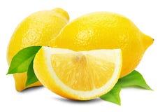 Juicy λεμόνια που απομονώνονται στο άσπρο υπόβαθρο Στοκ φωτογραφία με δικαίωμα ελεύθερης χρήσης