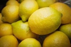 Juicy κίτρινα λεμόνια στοκ φωτογραφίες