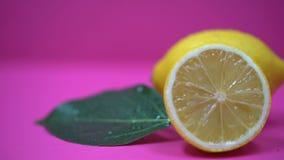 Juicy κινηματογράφηση σε πρώτο πλάνο λεμονιών, αναζωογονώντας οργανική τροφή, εσπεριδοειδή βιταμίνης C, cosmetology απόθεμα βίντεο