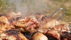 Juicy κρέας κοτόπουλου που ψήνεται στη σχάρα στη σχάρα απόθεμα βίντεο