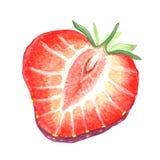juicy κόκκινη φράουλα Στοκ Φωτογραφία