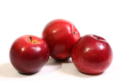 juicy κόκκινος ώριμος μήλων Στοκ Εικόνες