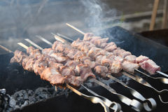 Juicy οβελίδια του κρέατος χοιρινού κρέατος που προετοιμάζονται στους άνθρακες 2 Στοκ Φωτογραφίες