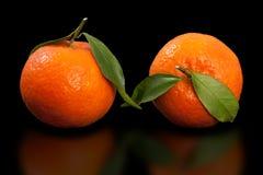 Juicy πορτοκαλί μανταρίνι, μισό ξεφλουδισμένο μανταρίνι δύο στο καθαρό μαύρο υπόβαθρο Στοκ φωτογραφία με δικαίωμα ελεύθερης χρήσης