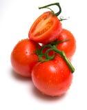 juicy τέλειες ντομάτες Στοκ φωτογραφία με δικαίωμα ελεύθερης χρήσης