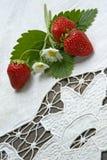 juicy φράουλα στοκ εικόνες